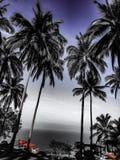 Mooie de meningsvakantie Koh Tao Thailand van het zonsondergangstrand Royalty-vrije Stock Fotografie
