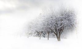 Mooie de steeg van de winter Stock Afbeelding