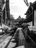 Mooie de vrijheidslevensstijl Thailand van de tempelgodsdienst Royalty-vrije Stock Fotografie