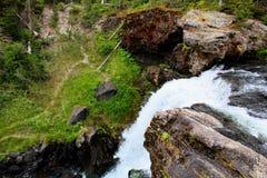 Mooie de watervalkreek of stroom van het Yellowstone Nationale Park onder de bossen royalty-vrije stock afbeelding