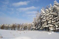 Mooie de winter Royalty-vrije Stock Afbeeldingen