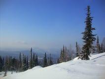 Mooie de winter landschap-bos, naaldbomen, bergbovenkant, sneeuw stock afbeeldingen