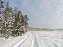 Mooie de winterbomen, gebied en eenvoudige manier, Litouwen Stock Afbeeldingen