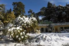 Mooie de wintercityscape Stock Afbeelding
