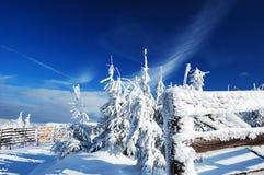 Mooie de winterdag in bergen Royalty-vrije Stock Foto's