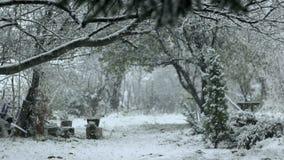 Mooie de Winterdag met Sneeuwval 01 stock videobeelden