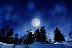 Mooie de winternacht Stock Fotografie