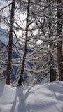 Mooie de winterscène in de Zwitserse alpiene bergen royalty-vrije stock afbeeldingen