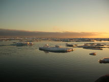 Mooie de winterzonsondergang Stock Afbeeldingen