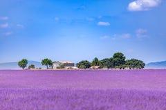 Mooie de zomeraard Het landschap van de de zomerzonsondergang van het lavendelgebied dichtbij Valensole De Provence, Frankrijk royalty-vrije stock foto's