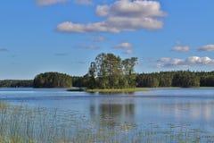 Mooie de zomerdag in Norrbotten Stock Foto's