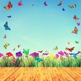 Mooie de zomersamenstelling met vlinders en bloemen Royalty-vrije Stock Afbeeldingen