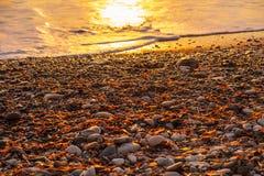 Mooie de zonsondergangmening van de strandkiezelsteen bij Petra de geboorteplaatsstrand van touromiou Aphrodite, in Paphos, Cypru stock afbeeldingen