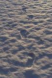 Mooie details van witte sneeuw en voetafdrukken op ijsmeer in zonsonderganglicht royalty-vrije stock fotografie