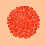 Mooie die bloemdahlia in grafische geïsoleerde stijlcontouren en lijnen, op witte achtergrond wordt getrokken stock illustratie