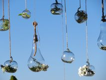 Mooie die cijfers van glas met bloemen van zeer goede smaak worden gemengd stock foto