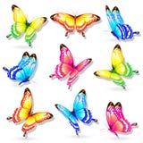 Mooie die kleurenvlinders, reeks, op een wit wordt geïsoleerd Royalty-vrije Stock Afbeeldingen