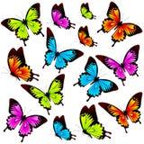 Mooie die kleurenvlinders, reeks, op een wit wordt geïsoleerd Royalty-vrije Stock Foto