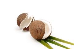 Mooie die Kokosnoten en Kokosnotenbladeren op witte achtergrond worden geïsoleerd Stock Foto