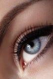 Mooie die macro van vrouwelijk oog met klassieke rokerige make-up wordt geschoten Perfecte vorm van wenkbrauwen, bruine oogschadu Royalty-vrije Stock Foto's