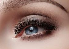 Mooie die macro van vrouwelijk oog met rokerige make-up wordt geschoten Perfecte vorm van wenkbrauwen Stock Foto's