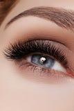 Mooie die macro van vrouwelijk oog met rokerige make-up wordt geschoten Perfecte vorm van wenkbrauwen Stock Foto