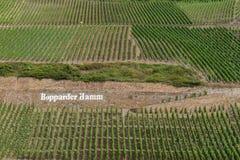 Mooie die Patronen door Wijngaarden op hellingen van Bopparder Hamm over de Rijn-Vallei worden gecreeerd, Duitsland Stock Afbeelding