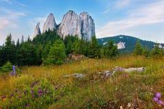 Mooie die rotsen door bos worden omringd Royalty-vrije Stock Foto's