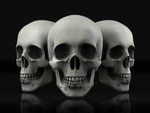 Mooie die schedel van geweven metaal wordt gemaakt Royalty-vrije Stock Foto
