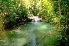 Mooie diepe bosvijver in het Nationale Park van Erawan, Kanchanaburi Royalty-vrije Stock Foto