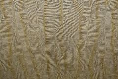 Mooie document textuur, patroon Achtergrond Muur Achtergrond royalty-vrije stock foto