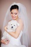 Mooie Donkerbruine Bruid met kleine hond Royalty-vrije Stock Afbeelding