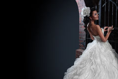 Mooie donkerbruine bruid op zwarte achtergrond Stock Foto