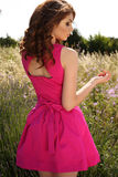 Mooie donkerbruine vrouw in het elegante kleding stellen op lavendelgebied Stock Fotografie