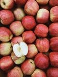 Mooie donkerrode de appelenachtergrond van de Imperiumherfst royalty-vrije stock afbeeldingen