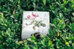 Mooie doos voor ringen Royalty-vrije Stock Foto