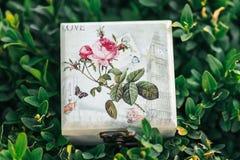 Mooie doos voor ringen Royalty-vrije Stock Fotografie