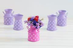Mooie droge bloemen Stock Foto's