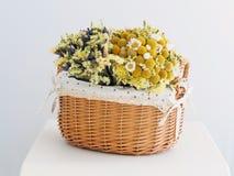 Mooie droge bloemen Royalty-vrije Stock Afbeelding