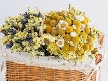 Mooie droge bloemen Stock Foto