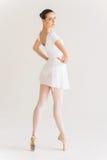 Mooie en bevallige ballerina Stock Afbeeldingen