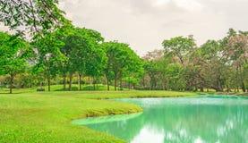 Mooie en goede mainternance van een park onder bewolkte hemel, schoonheidsbomen op groen gras vers gazon dichtbij een meer stock fotografie