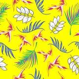 Mooie en kleurrijke hand getrokken Hawaiiaanse tropische bloemen herhaalde patroonvector Royalty-vrije Stock Afbeeldingen