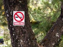 Mooie en verbazende advertentie in de boom voor nr die - bij galipan stad Caracas Venezuela roken stock fotografie