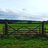 Mooie Engelse Plattelandspoort Royalty-vrije Stock Foto