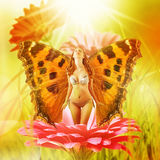 Fee met vleugels op een bloem Stock Afbeelding