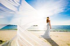 Mooie fiancee in witte huwelijkskleding en grote lange witte trai Stock Foto