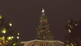 Mooie fonkelende Kerstboom in het vierkant bij nacht stock video