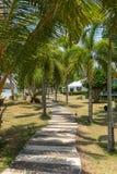 Mooie gang onder de Palmen in tropische toevlucht op Koh Kood-eiland stock foto