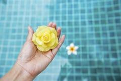 Mooie geel nam kaarsbloem op meisje overhandigt de vage blauwe achtergrond van het zwembadwater toe Royalty-vrije Stock Foto's